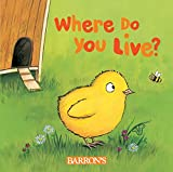 Where Do You Live? (Q & A Flaps Books)