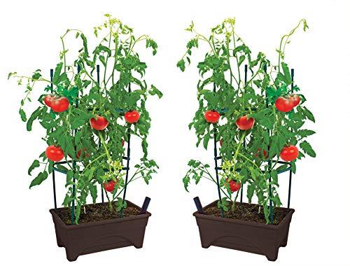 "Emsco Group 2376-2-1 Start Pickin' Raised Bed Seed Starter-12 x 20""-2pk- Brown Grow Box"
