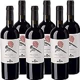 Uvaggio: Nero D'Avola; Gradazione: 13%; Temperatura di Servizio:16° /18°; Stile:Vino Rosso Secco; Regione di Provenienza: Sicilia;