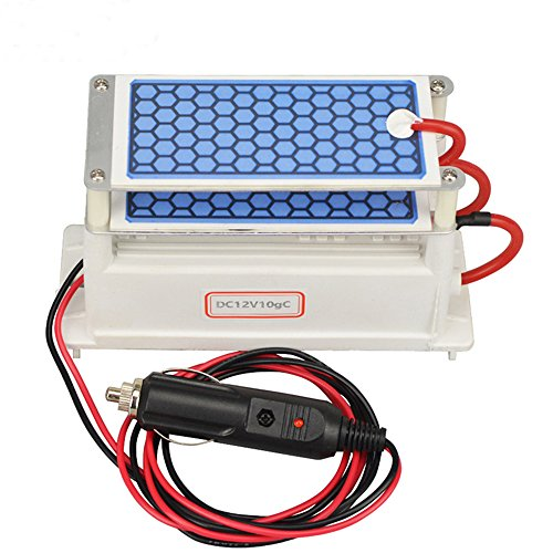 ATWFS Portable Ozone Generator Car Ceramic Plate DC12v 3.5g/5g/7g Air Purifier Air Sterilizer Car Ozone (10 g)