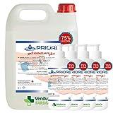 Gel Igienizzante Mani - Tanica da 5 litri e 4 flaconi da 1 litro di gel mani alcool 75% igienizzante antibatterico. MADE IN ITALY (5000 ml + 1000 ml + 1000 ml + 1000 ml + 1000 ml)