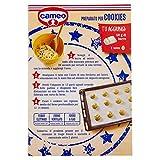 Immagine 1 cameo preparato per cookies 300