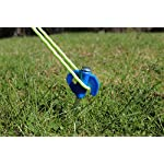 OLPro Hard Ground Camping Tent Pegs (Pack of 20) - Blue