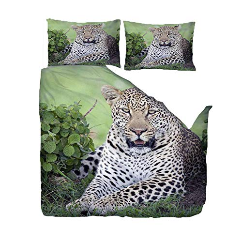 Duvet Cover 3D Print Double Bedding Quilt Cover Set 200x200 Cm Animal Black Spotted Leopard 3D Print Quilt Cover Duvet Cover Super Soft FashionTeenagers Comforter Cover, with 2 Pillowcase