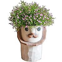 抽象ライオンフラワーポットアートクリエイティブ漫画動物植物花オルガンアート観葉植物庭装飾飾りデスクトップ装飾工芸品