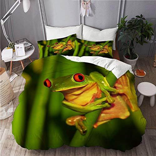 LISNIANY Duvet Cover,Kleiner grüner Frosch mit den roten Augen, die auf exotischer Betriebswilder Natur von Costa sitzen,Mikrofaser Bettbezug 240 * 260cm 2 Kissenbezug 50 * 80cm