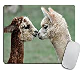 Funny Alpaca Gaming Mouse Pad Custom, Typography Computer or Office Work Station Decor