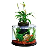 Elive AquaDuo 3 Gallon Betta Aquarium Fish Tank Kit, LED Lighting, Aquaponic and Power Filter, Cartridges and Hydrocorn Included