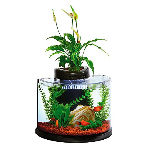 Elive AquaDuo 3 Gallon Betta Aquarium Fish...