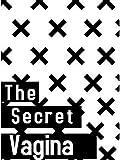 The Secret Vagina