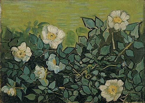 Heiwu Puzzle 1 000 Puzzle Rompecabezas de Combinación Van Gogh Wild Rose Infantiles Juguetes educativos Bricolaje Brain Challenge