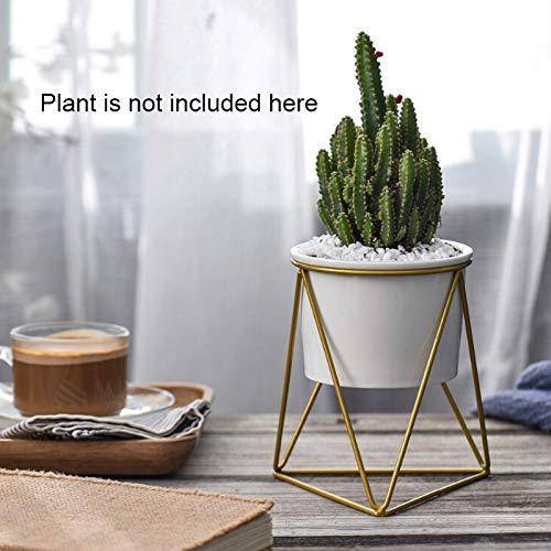 Wuyou Pflanzkübel Untersetzer Cactus Tray Planter Töpfe Keramik Geometrisches Blumen-Schüssel Gartenpflanzer Saftige Planter Eisen Topf-Tray Drop Jede Abteilung (Color : Light Grey)
