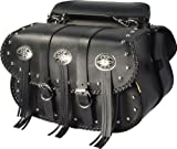 Dowco Willie & Max 58320-00 Warrior Series: Synthetic Leather Straight Motorcycle Saddlebag Set, Black, Universal Fit, 10 Liter Each/20 Liter Total Capacity
