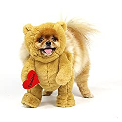 dog bear outfit