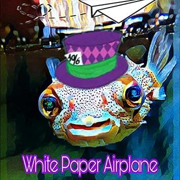 White Paper Airplane