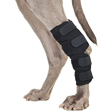 Back on Track Therapeutic Dog Rear Leg/Hock Brace (Pair) Small 7.25-Inch Length, 4 to 6.25 Inches Top Width, 3 to 4.75-Inches Bottom Width with 4 Adjustable Velcro Straps