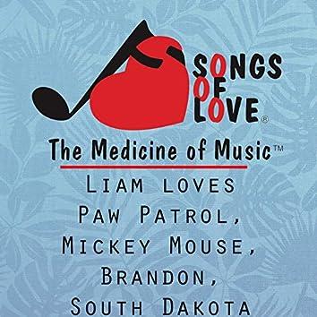 Liam Loves Paw Patrol, Mickey Mouse, Brandon, South Dakota