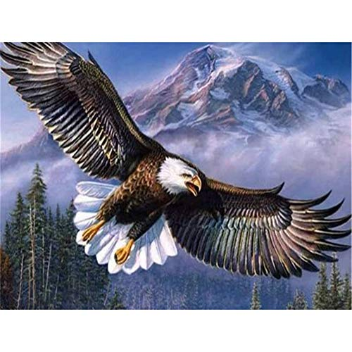 5D DIY Diamond Painting by Number Kit Snow Mountain Eagle Round Drill,50x40cm Adults and Kids Full Drill Beads Crystal Rhinestone Embroidery Cross Stitch Supplies Arts Craft for Home Wall Decor U5366