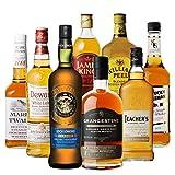 ロッホローモンド オフィシャルボトル & ハイランドダブルカスク シングルモルト ウイスキー入り! ウイスキー エキスパート 厳選 8本セット スコッチ バーボン ブレンデッド 詰め合わせ 飲み比べ 長S