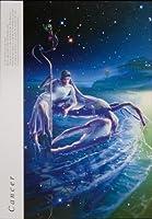 04【KAGAYA】12星座ノートシリーズ キャンサー(かに座)