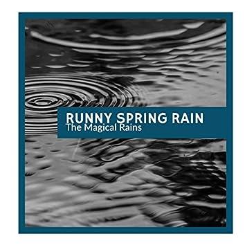 Runny Spring Rain - The Magical Rains