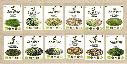 SaatPur Bio-Keimsprossen-Set (12 Sorten) Weizen, Sonnenblumen, Zwiebeln, Linsen, Kresse, Alfalfa, Brokkoli, Rauke, Daikon Rettich, Mung Bohnen, Radies Red Rubin, Erbsen.