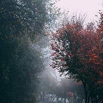 Monsoon Mood - Serene Rain | Deep Sleep