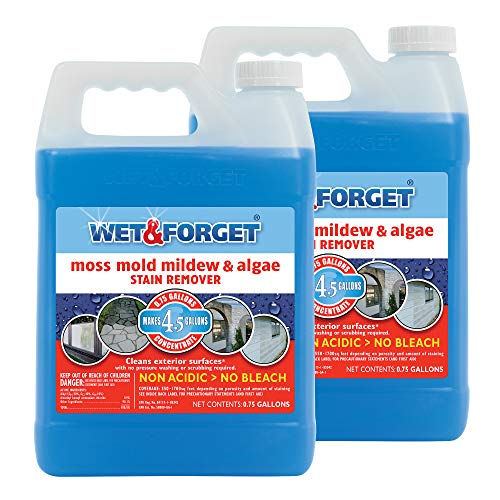 WET & FORGET .75 Gallon Moss, Mold, Mildew & Algae Stain Remover, 2 Pack