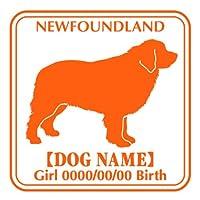 ワラ犬 ニューファンドランド ステッカー Eパターン ボーイリーズナブルレッド(赤)