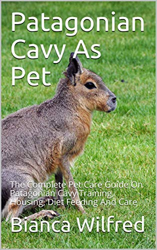 Patagonian Cavy As Pet: The Complete Pet Care Guide On Patagonian Cavy Training, Housing, Diet Feeding And Care (English Edition)