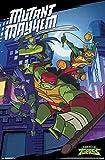Trends International Nickelodeon Rise of The Teenage Mutant Ninja Turtles - Mayhem, 22.375' x 34', Unframed Version