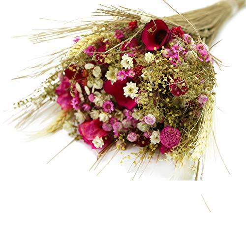 Trockenblumenstrauß Fantasie | Getrocknete Blumen in verschieden Farbtönen | Deko Strauß mit Trockengräsern und Trockenblumen mit natürlich gewachsenem Ixodia, Bougainvillea & Craspedia (Rosa)