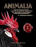 Serie Animalia: Las 99 mejores imágenes de Gallos & Gallinas