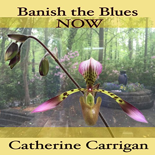 Banish the Blues Now audiobook cover art