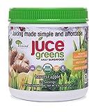 JUCE Greens Superfood: Harvest Apple Flavor | Best Tasting Blend | Detox with Probiotics, Antioxidants, Fiber | USDA Organic Ingredients (Wheatgrass, Spirulina, Chlorella, Chlorella, Reishi) |