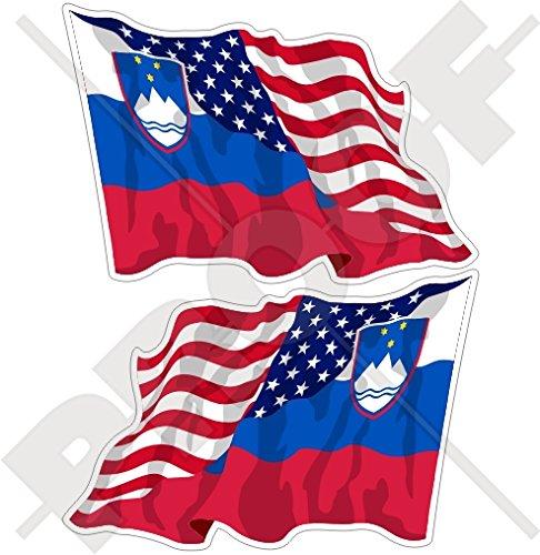 Verenigde Staten van Amerika & SLOVENIA, Amerikaans-Sloveense Vliegende Vlag 4,7