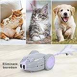 Zoom IMG-2 dadypet giocattolo per gatti automatico