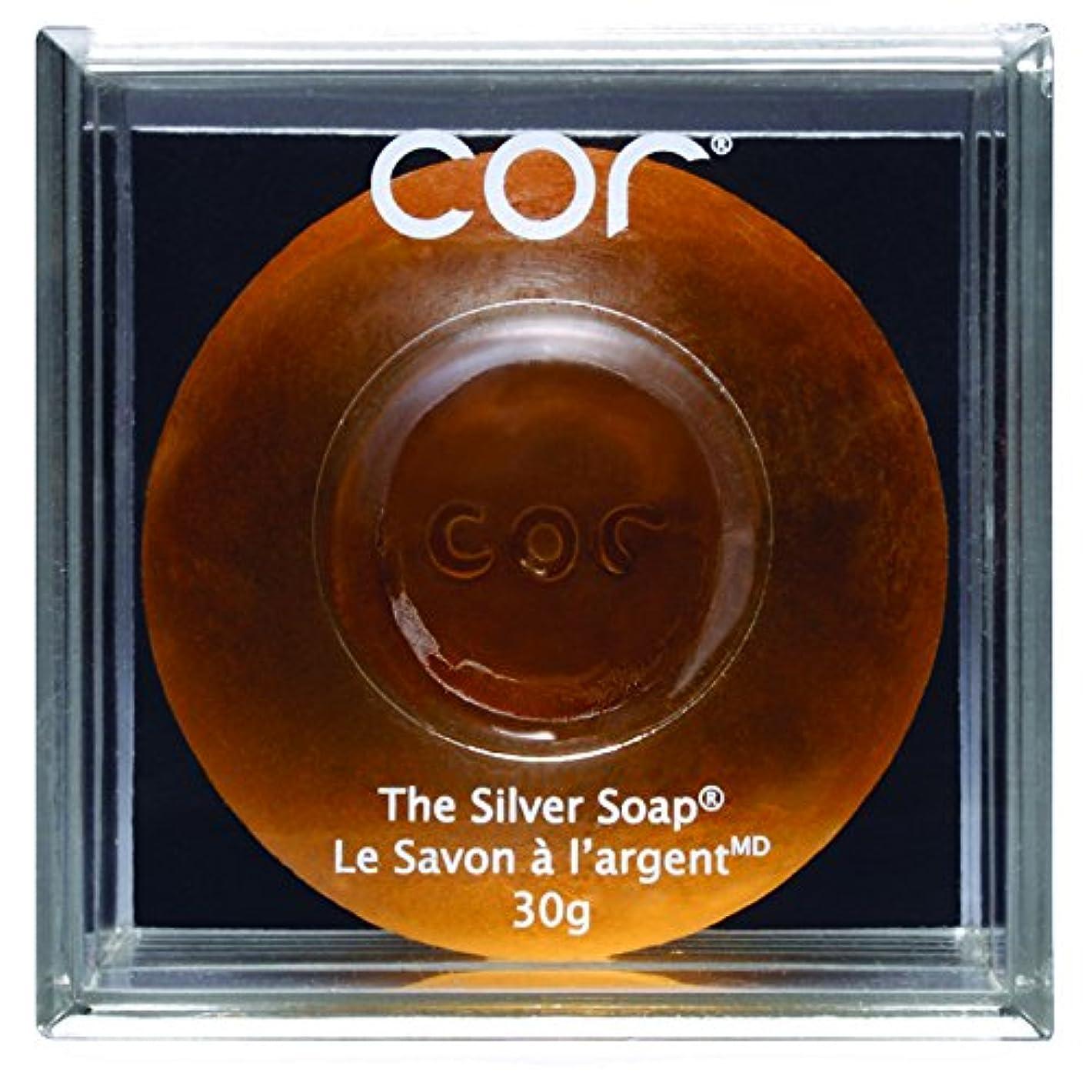 比喩自己尊重ヒューズCor Silver Soap - 30 G (並行輸入品) [並行輸入品]