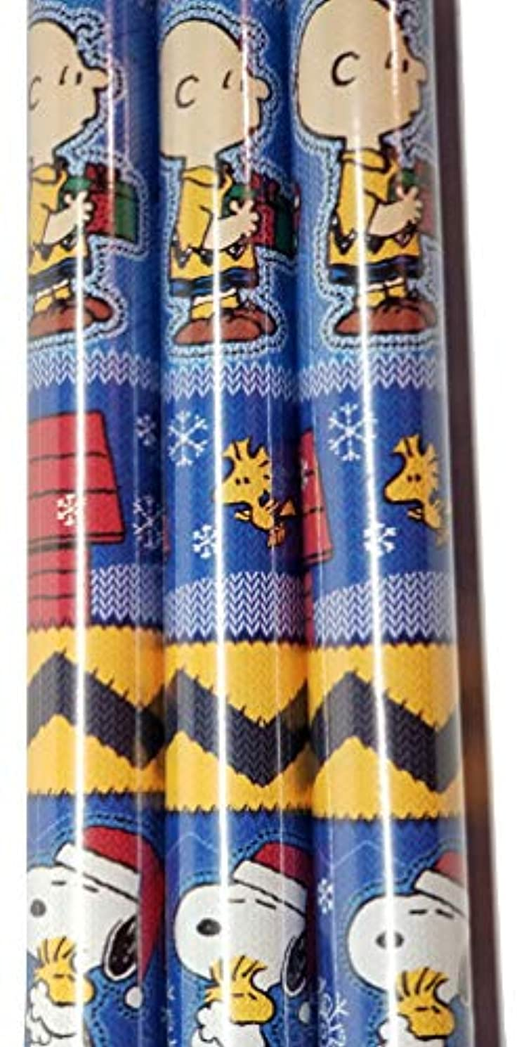 PEANUTS Charlie Brown & Snoopy Theme Gift Wrapping Paper 20 sq ft.(1 Roll)