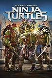 Teenage Mutant Ninja Turtles 2014 Movies