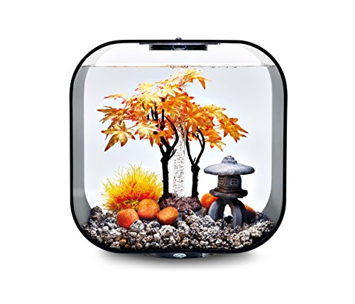 OASE biOrb Decor Set 30L Herbst - mehrteilige Aquariums-Dekoration, Komplett-Set mit Unterwasser-Accessoires, Zubehör fürs Aquarium-Becken, in Gelb und Orange