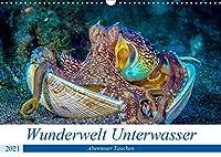 Wunderwelt Unterwasser (Wandkalender 2021 DIN A3 quer): Tauchen in Moaboal/Philippinen (Monatskalender, 14 Seiten )