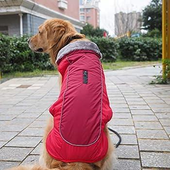 Manteau imperméable pour Chien Veste d'hiver rembourré matelassé Doudoune pour Chien Pet Chiot vêtements Réfléchissant Gilet Convient aux Petits et Moyens Chiens Veste de Chien