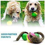 El gato del perro del castor Comadreja Salto en movimiento de balanceo de la bola, bola del juguete del animal doméstico interactivo, Puppy Juguetes Juego Favores duradero y útil, juguete del gato con