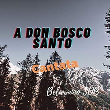 A Don Bosco Santo Cantata