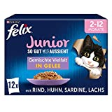 FELIX So gut wie es aussieht Junior Kittenfutter nass in Gelee, Sorten-Mix, 6er Pack (6 x 12 Beutel à 85g)