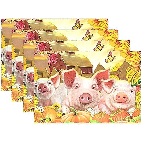 Citrouilles de Fleurs d'automne Porcs Sets de Table Ferme Papillon 12 x 18 po (30 * 45 cm), Tapis de Table lavables et résistants à la Chaleur pour Le Potager Set de 4