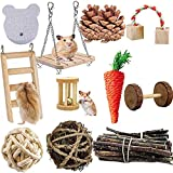21PCS Hamster Guinea Pig Chew Toys Set Natural Wooden mouse Exercise Toys and Accessories Teeth Care Molar Toys for Rabbit Syrian Rats Chinchillas Gerbils bunny& hámster