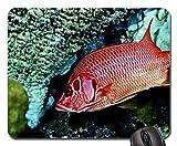 Yanteng Cojín de ratón temático del Juego de los Pescados, cojín de ratón Rojo de los Pescados, Mousepad