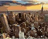 JSDZ Puzzle de 1000 Piezas de Rompecabezas de Madera Puzzles y Rompecabezas Rompecabezas Crepúsculo Rompecabezas de Madera Decoración para el hogar con Vista al Paisaje de Nueva York Concurso de Arte
